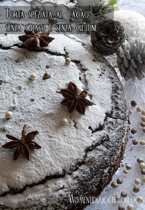 torta speziata al cacao senza grassi e senza glutine