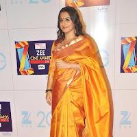 Vidya balan and sridevi at zee cine awards 2013.