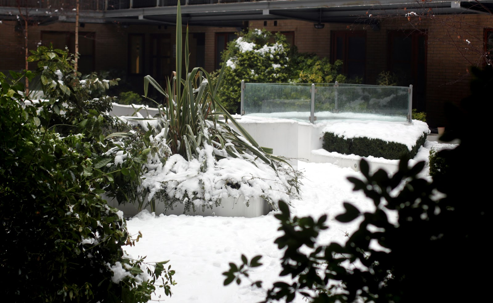 Noko building and garden in the snow