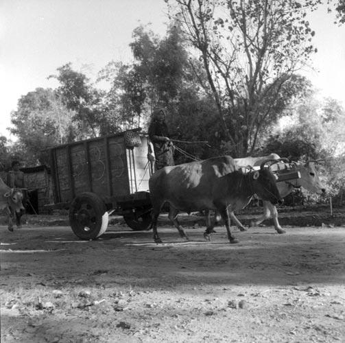 Transports dans les années 1950