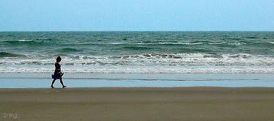 Praias de Bertioga