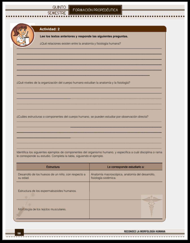 Lujoso Ejemplos De Anatomía Y Fisiología Galería - Anatomía de Las ...