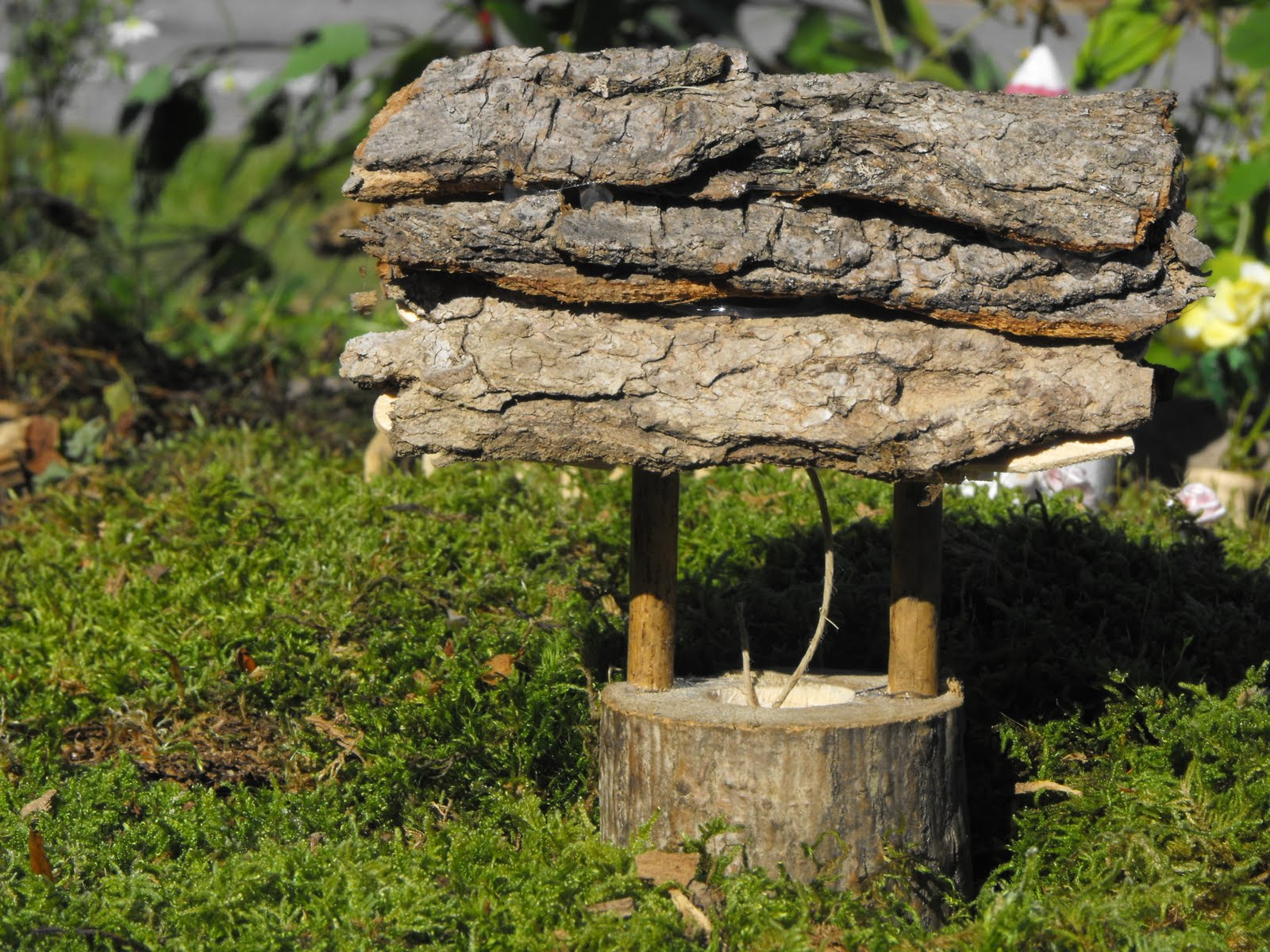 my serenity our fairy garden. Black Bedroom Furniture Sets. Home Design Ideas