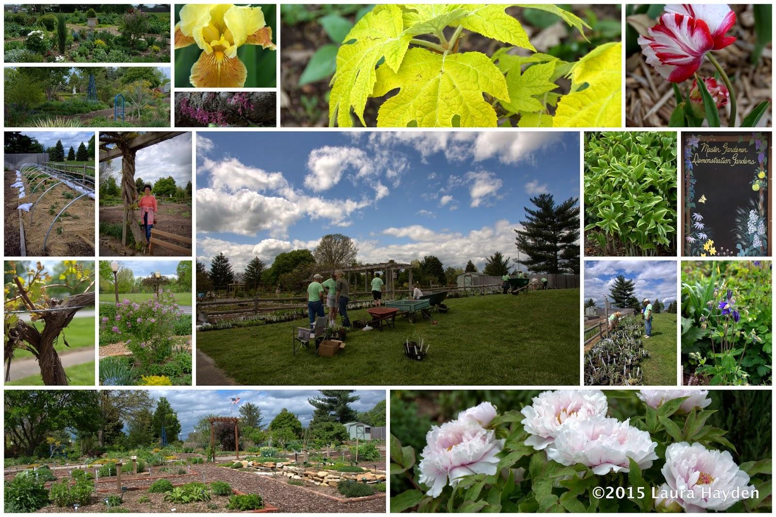 Durable Gardening