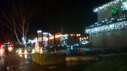 Christmas Lights-Candy Cane Lane by Stacey Kuhn
