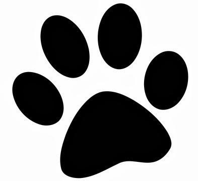 Animal Tudo de Bom