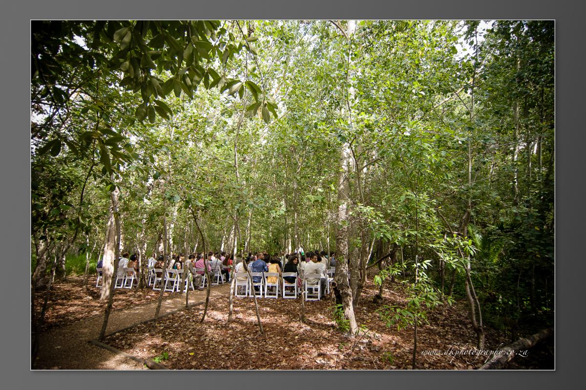DK Photography DVD+slideshow-340 Cleo & Heinrich's Wedding in D'Aria, Durbanville  Cape Town Wedding photographer