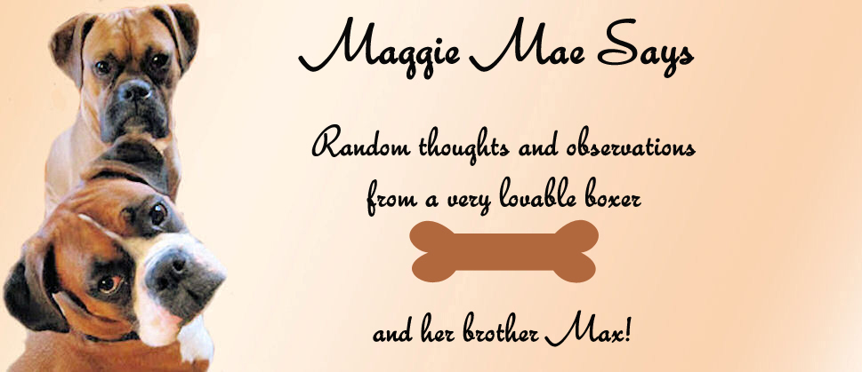 Maggie Mae Says