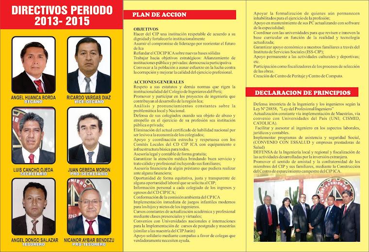 ELECCIONES CIP ICA