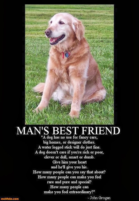 "a dog is a man s best friend Have you ever heard the expression, ""a dog is a man's best friend"" dogs and humans have lived together and had a special connection that dates back 15,000 years recently a dog named capitan, has shown us why dogs are a."