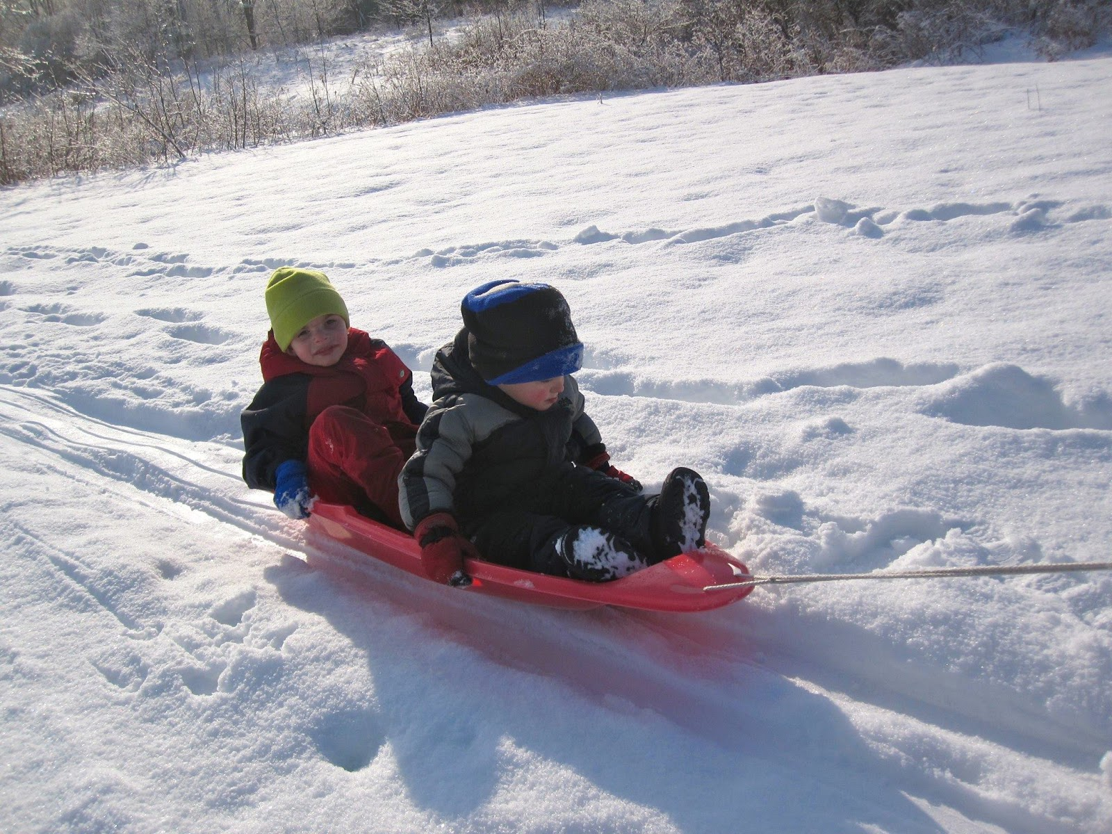 grandsons sledding in the snow