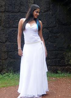 Hot and sexy Priyamani photo shool |southindian actress 36