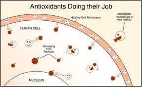 Antioxidants Health Benefits