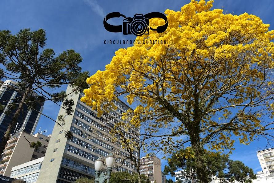 Circulando por Curitiba