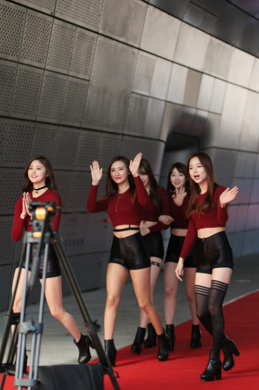 EXID 2015 Cable TV Broadcast Awards