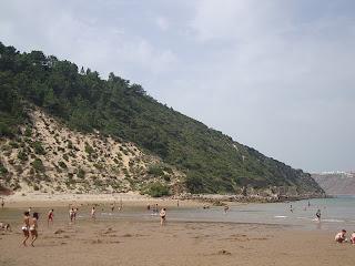 Salir do Porto beach sea and trees photo - Caldas da Rainha