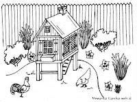 Gambar Peternakan Ayam Petelur