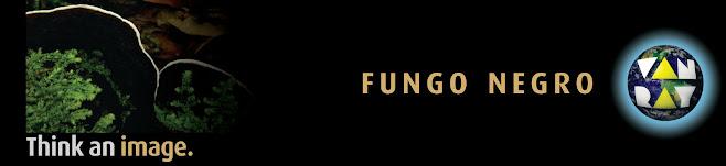 fungo negro van ray