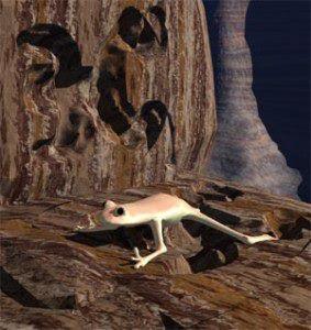 MISTERI Haiwan Dalam Batu Belum Terjawab