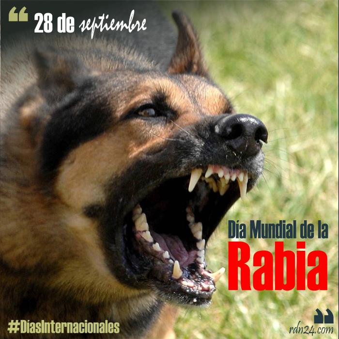 28 de septiembre – Día Mundial de la Rabia #DíasInternacionales