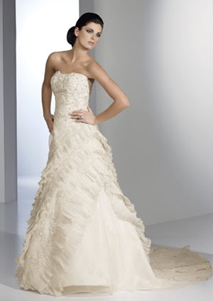 Shari Johns - As you wish...: The Perfect Bridal Gown