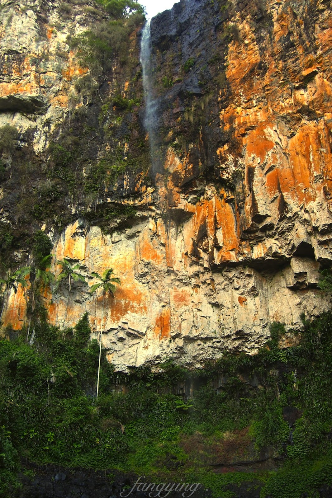Springbrook National Park, bibo falls