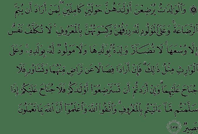 QS. Al Baqarah 2:233