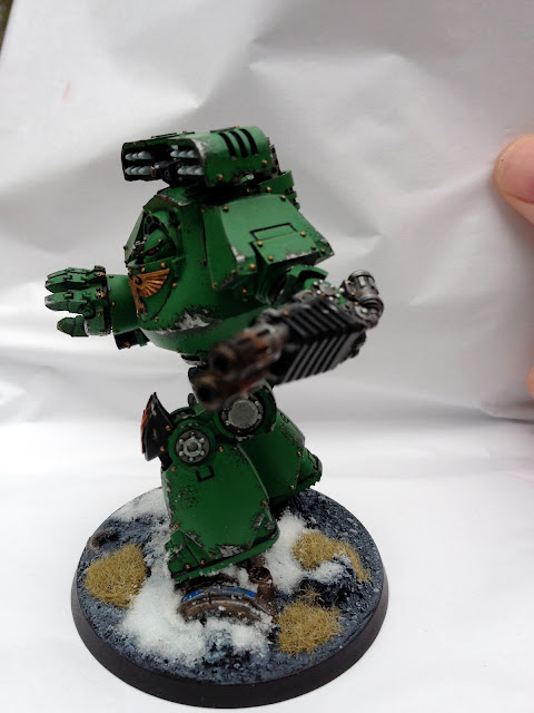Salamanders Contemptor - Left View