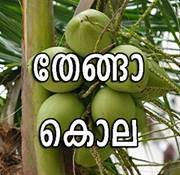 Thenga kola - comment picture