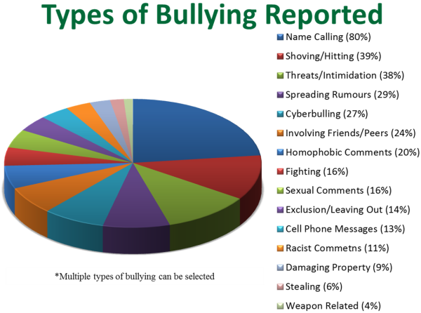 Cyber bullying essay points
