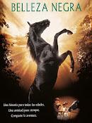 Belleza negra (Un caballo llamado Furia) (1994)