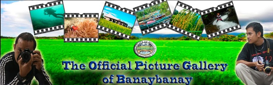 Banaybanay Picture Gallery