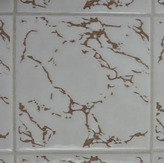 A close up of a tile, white with marbled brown lines.  There is a distinctive chick shape running top left to bottom right.
