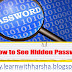 How to see the Hidden Password