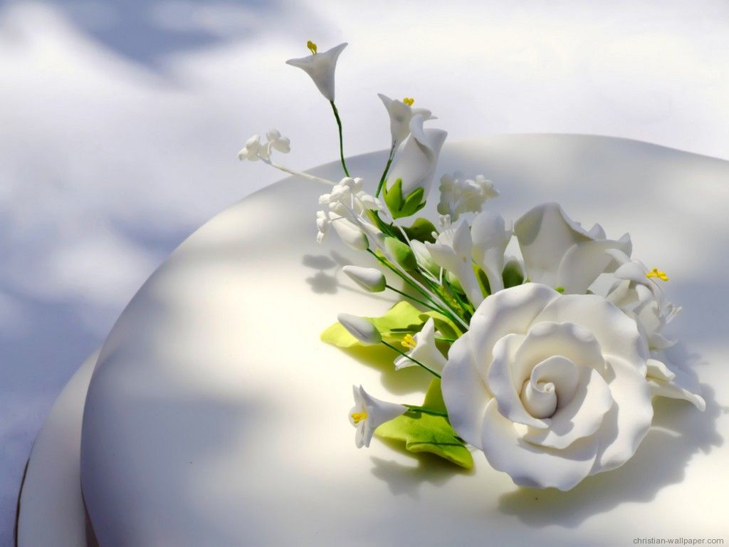 romantic flowers wallpapers flower - photo #25