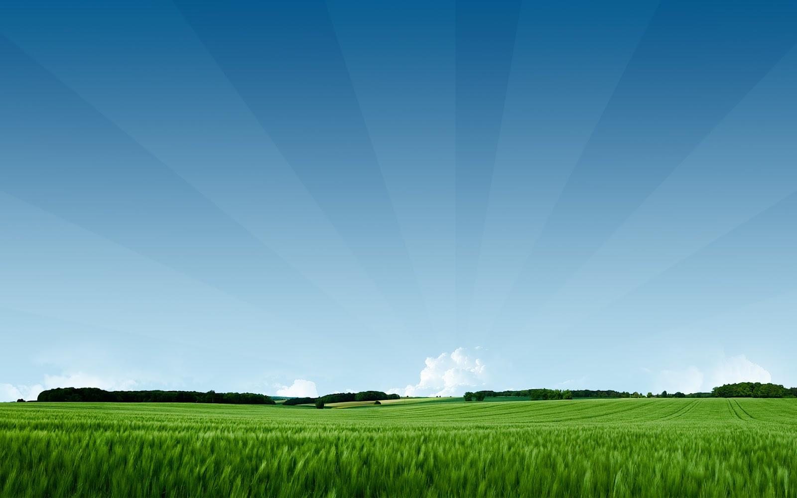 http://2.bp.blogspot.com/-0VNywfUzXu8/T8NUlansQPI/AAAAAAAAAIw/RusZgPOXdxQ/s1600/summer_3_hd_wallpaper_1920x1200.jpeg