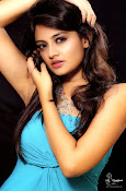 Nikitha Narayan Latest Sizzling Portfolio-thumbnail-13