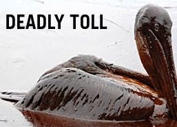 """A Deadly Toll"""