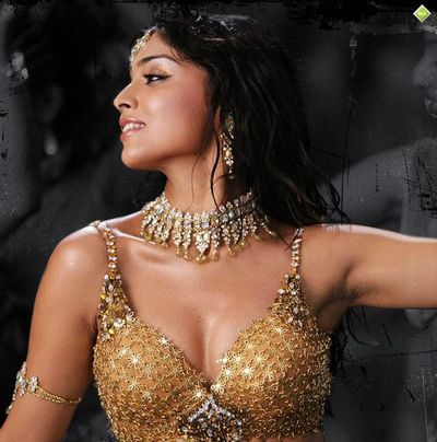 shriya saran hot. Shriya Saran hot photos