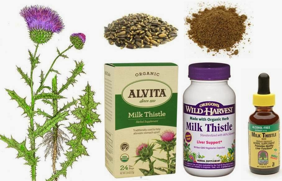 How much milk thistle to give my dog