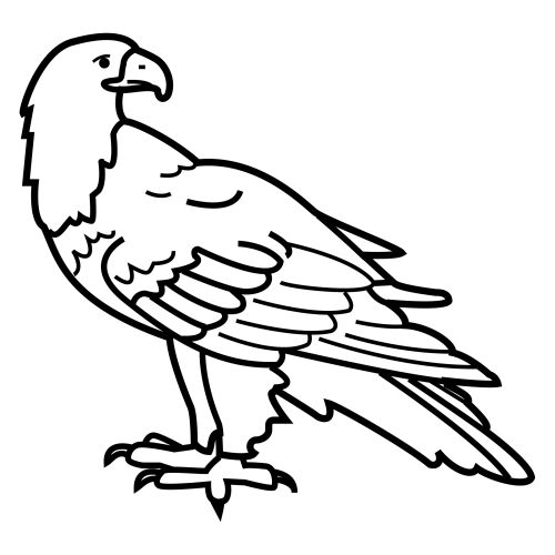Dibujo para colorear de la aguila del america - Imagui