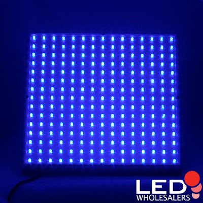 Blue Led Lights-2