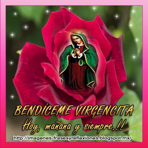 IMAGENES DE LA VIRGEN DE GUADALUPE Gifs y  - Imagenes Dela Virjen De Guadalupe Con Frases