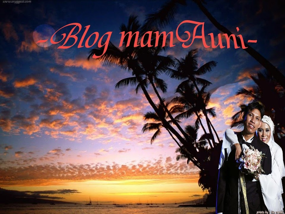 blog mama auni
