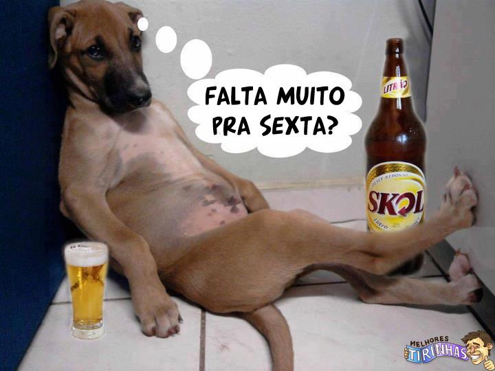 foto fiesta carnaval xxx brasil gratis: