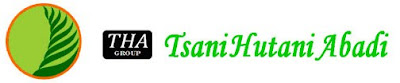 Tsani Group