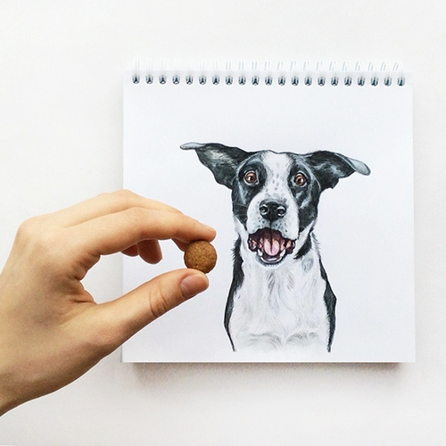 20-Stay-Valerie-Susik-Валерия-Суслопарова-Cats-and-Dogs-Interactive-Animal-Drawings-www-designstack-co