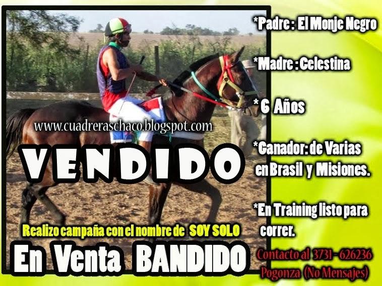 BANDIDO EN VENTA