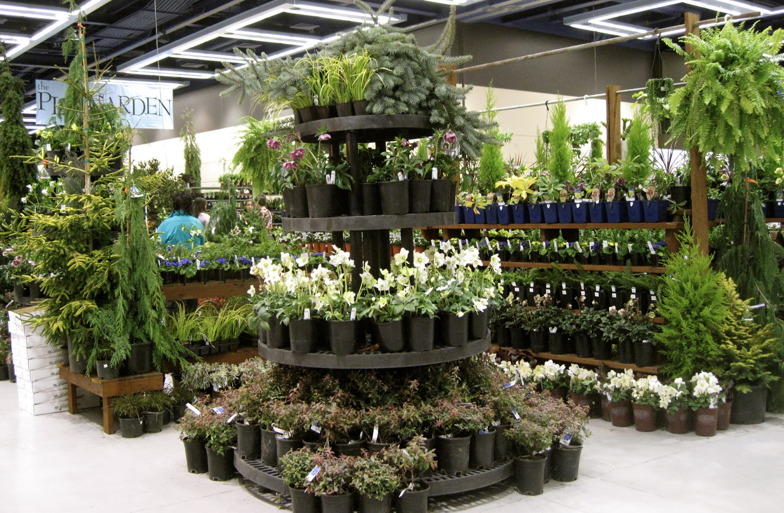Like Its Display At The Tacoma Home And Garden Show, Bark And Garden Had A  Beautifully Laid Out And Large Display Of Plants For Sale