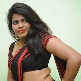 Sitara Hot Photos in Saree at Gundello Guchi Guchi Champake Movie Press Meet 19